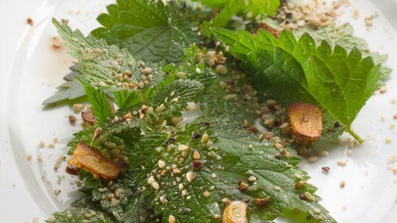 Rezept: Salat aus Brennnessel