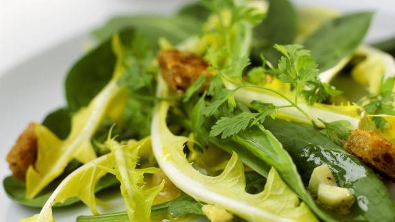Rezept: Salat aus Löwenzahn, Sauerampfer, Käse und Croutons