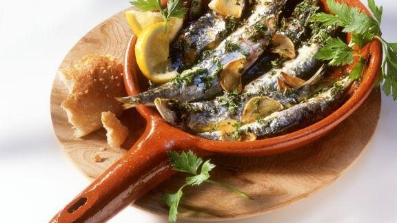 Rezept: Sardinen mit Knoblauch und Kräutern