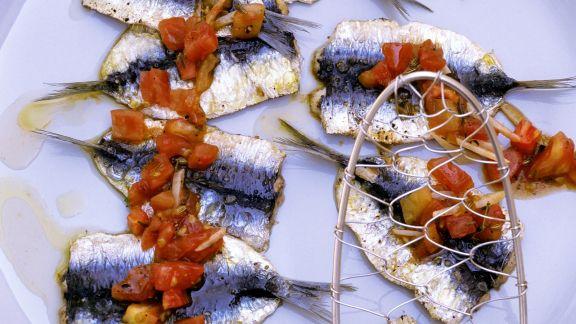 Rezept: Sardinenfilets mit Tomaten