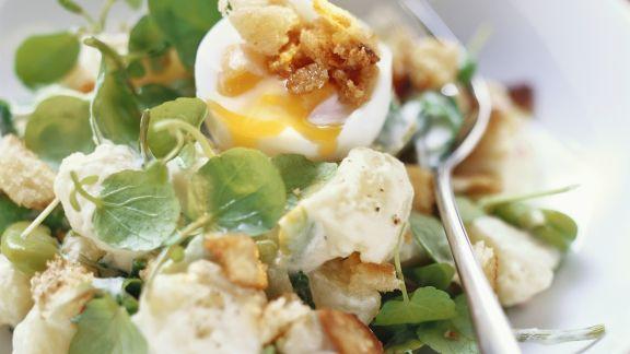 Rezept: Saubohnen-Kartoffelsalat mit Wasserkresse