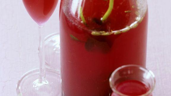 Rezept: Selbst gemachter Johannisbeer-Kräuter-Likör