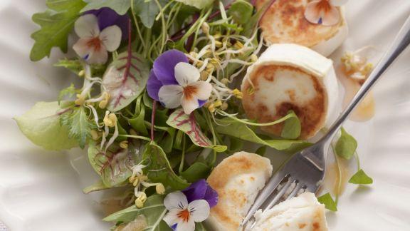 Rezept: Sommerlicher Blattsalat mit Ziegenkäse und Himbeerdressing