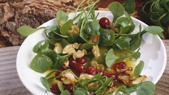Rezept: Tellerkraut mit Cranberries und Pastinakencrackern