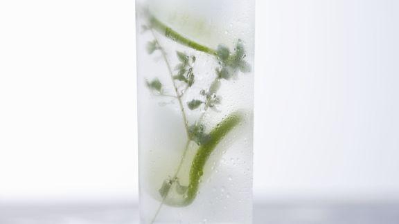 Rezept: Thymian-Limonaden-Cocktail mit Wodka