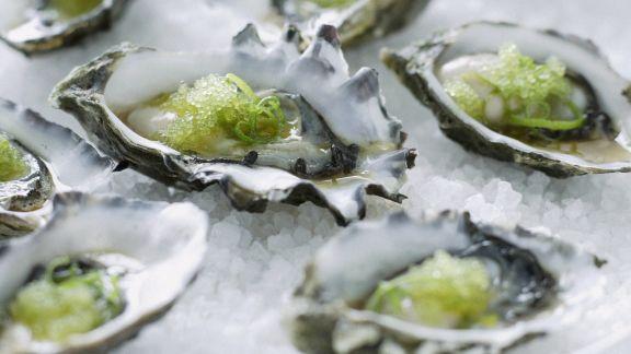 Rezept: Wasabi-Austern