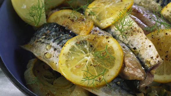 Rezept: Zitronen-Makrele mit Fenchel