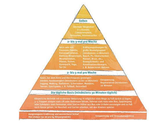 Froböse Bewegungspyramide