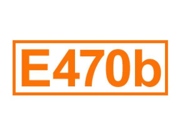 E 740 b ein Trägerstoff