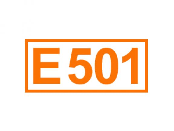 E 501 ein Backtriebmittel