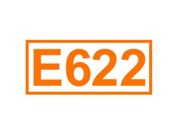 E 622 ein Geschmacksverstärker