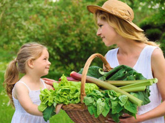 Spinat und Rhabarber: Worauf Eltern bei Frühlingsgemüse achten sollten