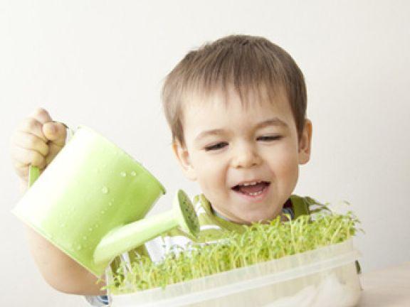 kr uter ziehen kinderspa mit kulinarischem wert eat smarter. Black Bedroom Furniture Sets. Home Design Ideas