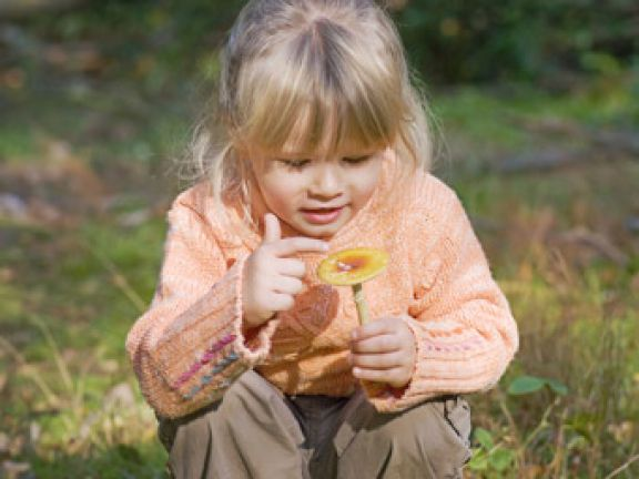 pilze sammeln mit kindern aber sicher eat smarter. Black Bedroom Furniture Sets. Home Design Ideas
