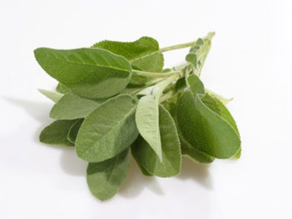 hilft salbei bei halsschmerzen eat smarter. Black Bedroom Furniture Sets. Home Design Ideas