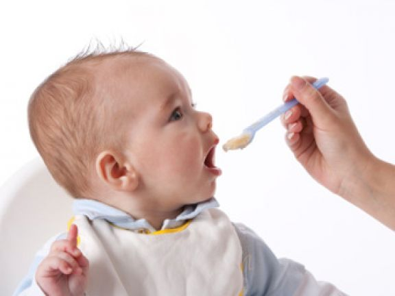 Im Test: Babynahrung