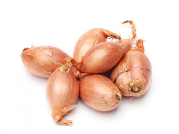 Schalotten - die Zwiebel der Delikatessküche