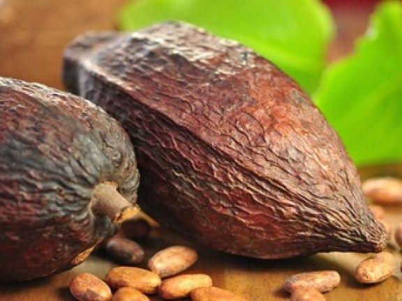 Lecker: Power-Drink Kakao © Printemps