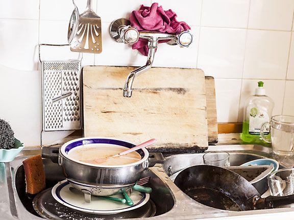 Keime in der Küche