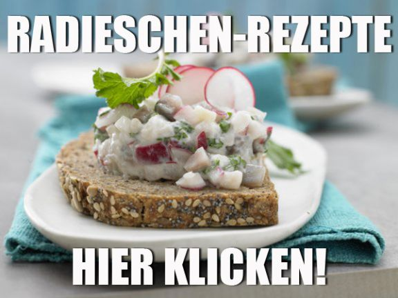 Radieschen-Rezepte