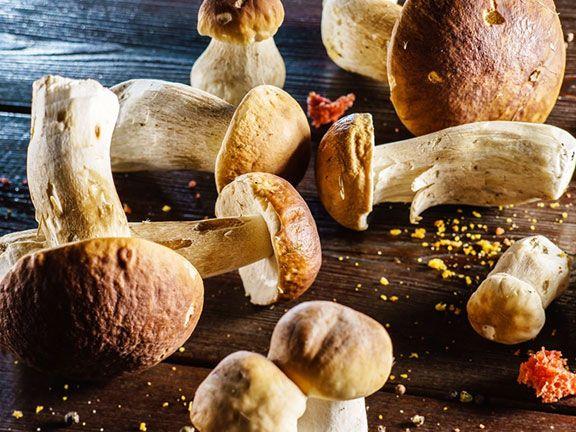 Pilze gut kauen und ordentlich garen