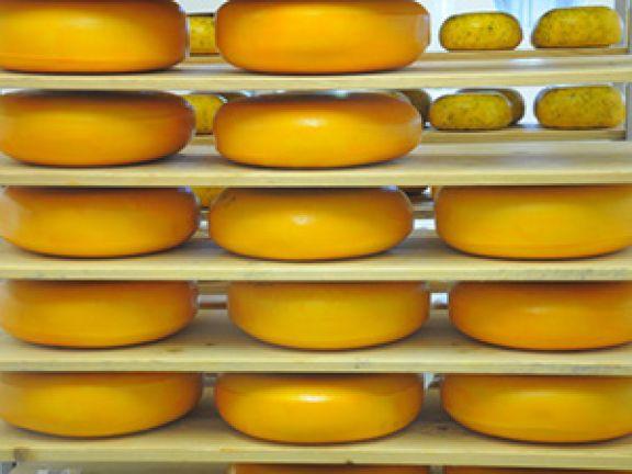 Überzugsmittel schützen unter anderem Käselaibe. © seeyou | c. steps - Fotolia.com