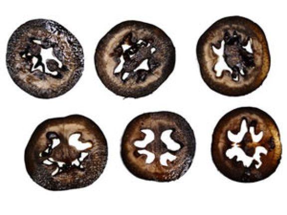 """""""Schwarze Nüsse"""" ist nur eine von vergessenen deustchen Spezialitäten © Lucky Dragon"""
