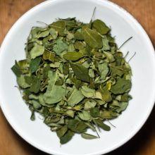 Moringa-Tee Blätter