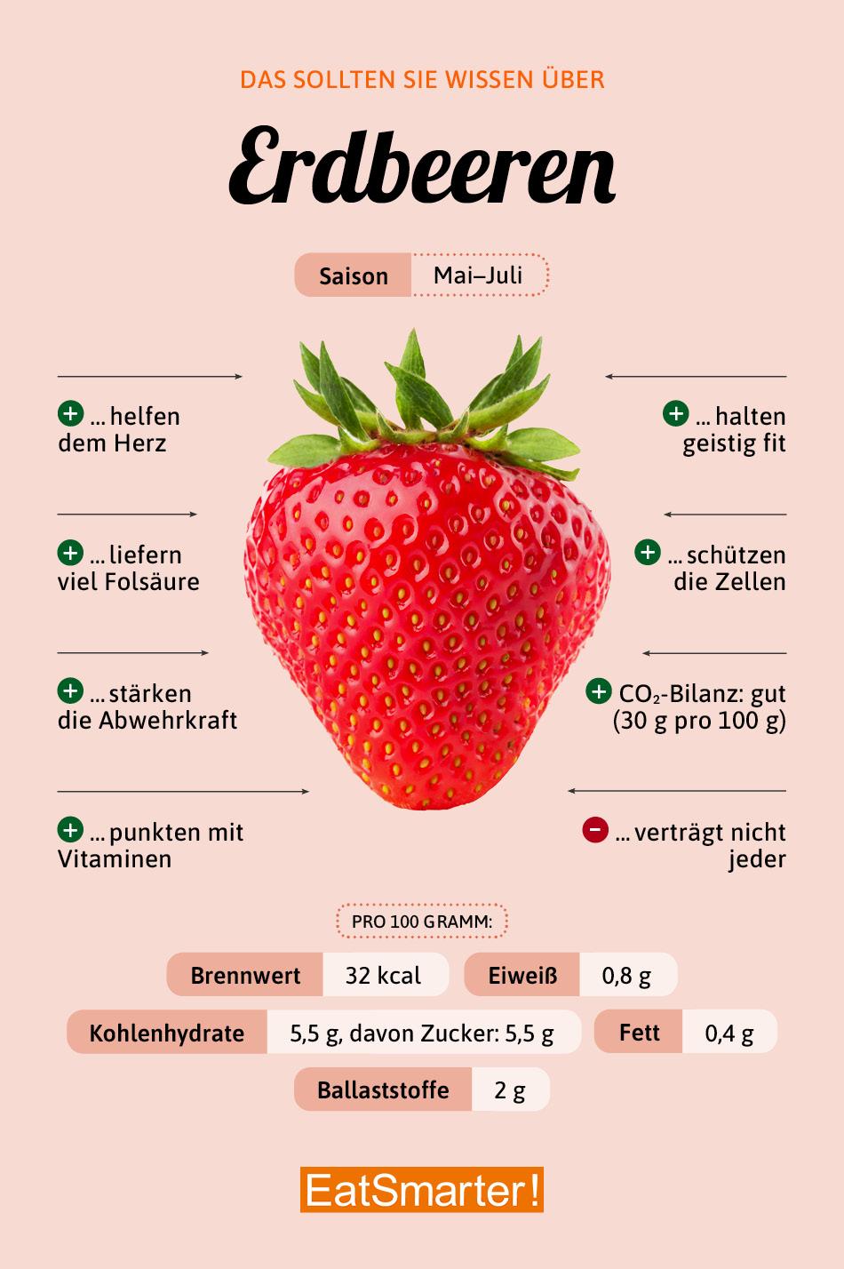 Erdbeere Warenkunde