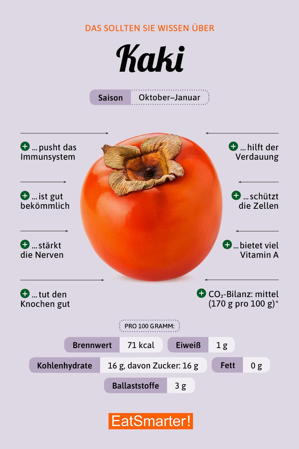 Infografik Kaki