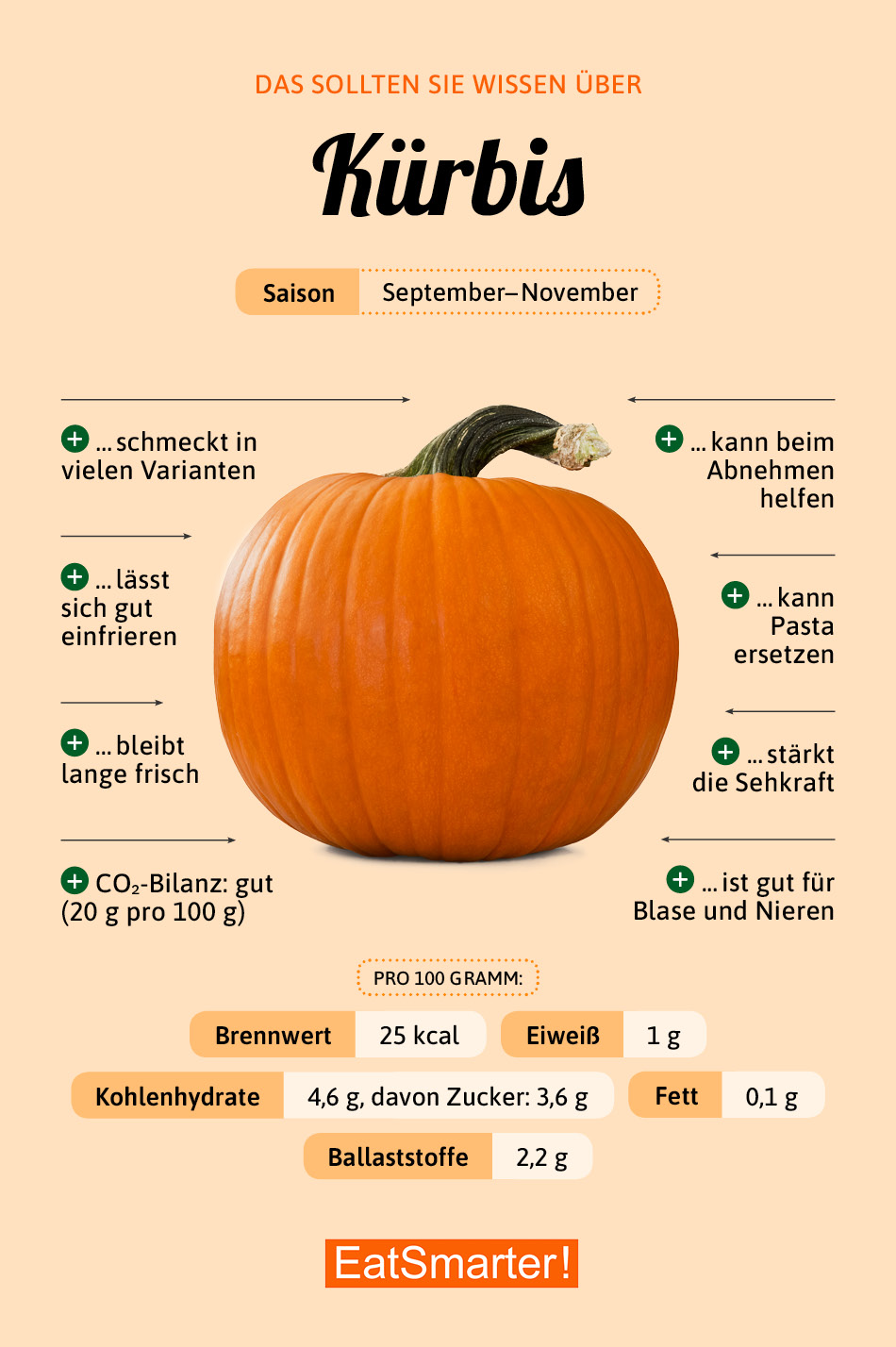 Infografik Kürbis