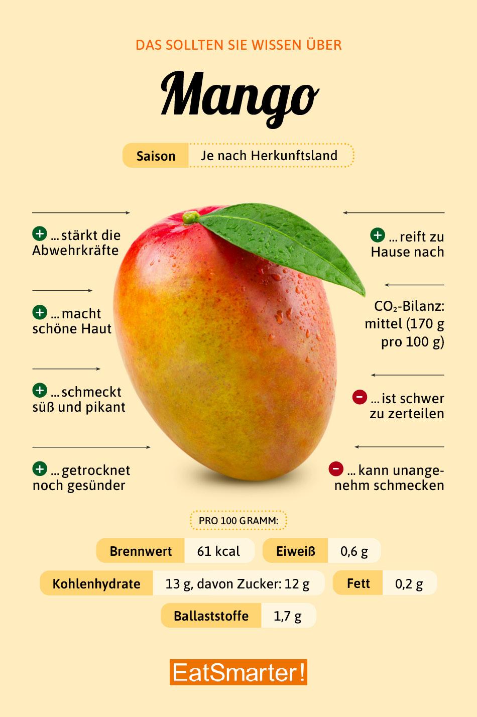 Warenkunde Mango