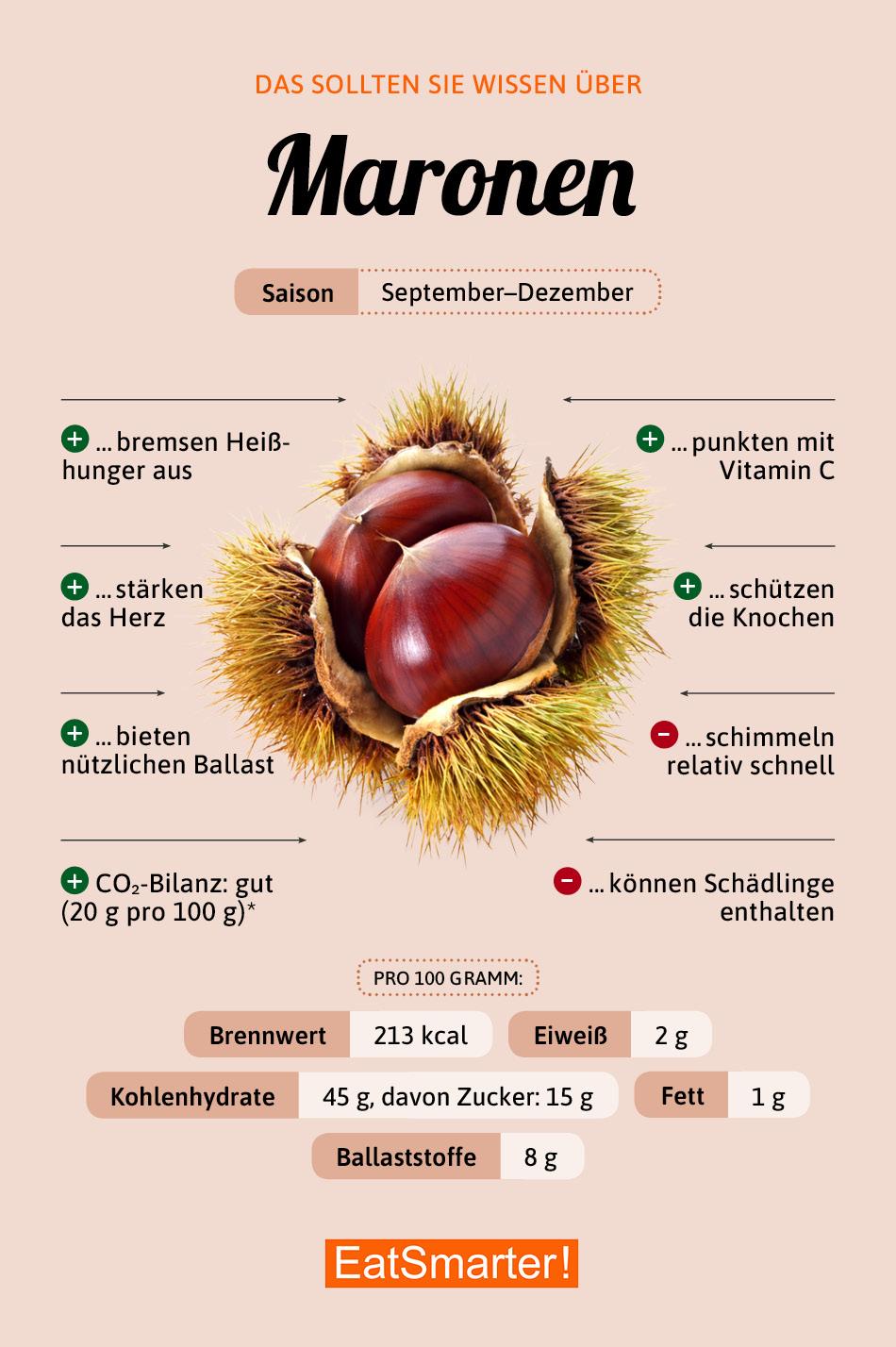 Infografik Maronen