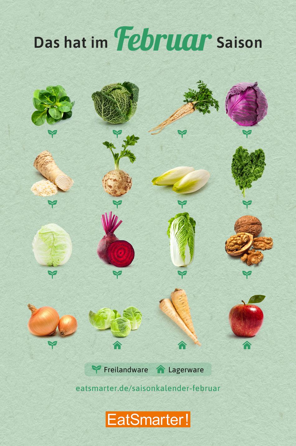 12+ Saisonkalender Februar Obst & Gemüse   EAT SMARTER Bilder