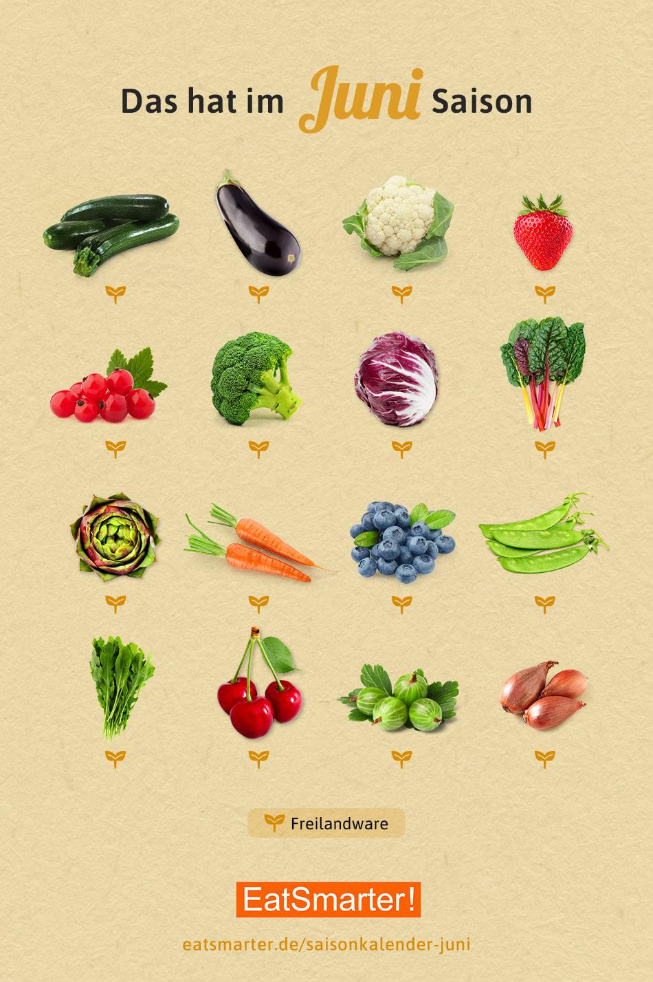 Saison Gemüse etc. - Cover