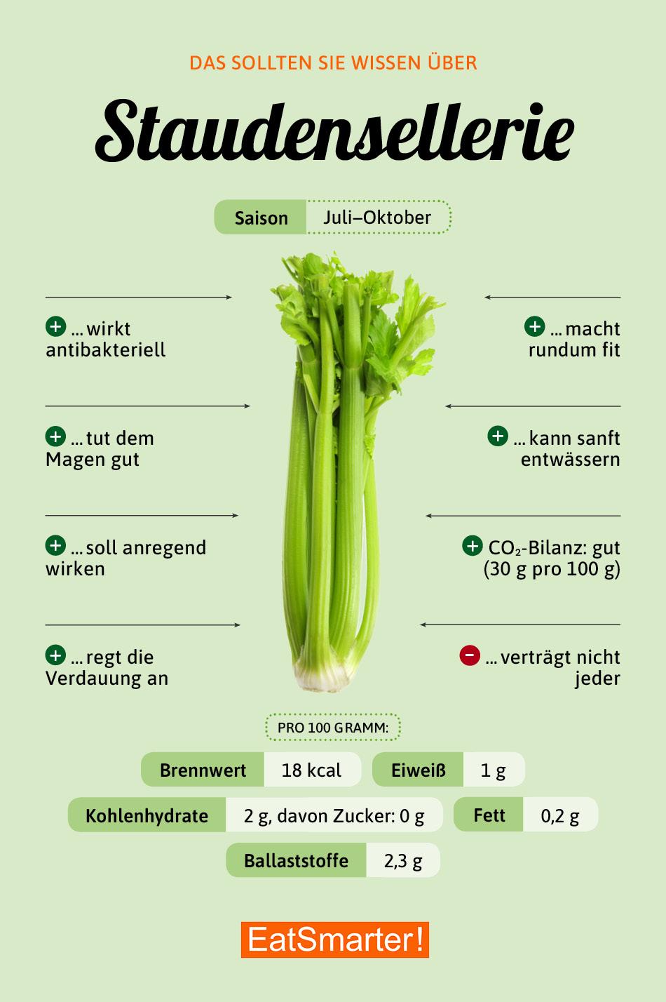 Infografik Staudensellerie