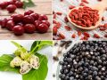 4 Superfrüchte – Was können Acai, Goji, Acerola & Noni wirklich?