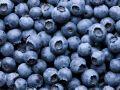 Genialer Trick: So bleiben Beeren länger frisch