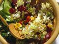 Bunter Blattsalat mit Eier-Dressing Rezept