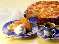 Aprikosen-Quark-Kuchen Rezept