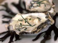 Austern in Sahnesauce Rezept