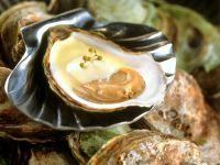 Austern mit Sabayon