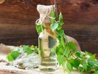 Birkenwasser – der Energydrink aus der Natur