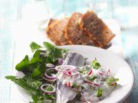 Bismarckhering mit Löwenzahn-Radieschensauce Rezept
