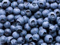Heimische Superfoods: Günstig und gesund!