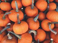 Herbstnews: Kürbis gegen Bluthochdruck?