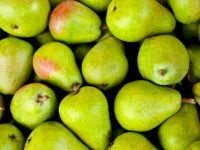 6 Gründe, warum Sie jetzt Birnen essen sollten!