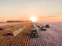CO2-Kennzeichnung auf Lebensmitteln bald verpflichtend?