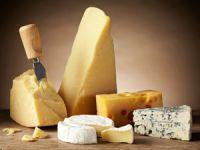 Käse – ein kulinarischer Hochgenuss