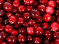 4 Gründe: Darum sind Cranberries gesund